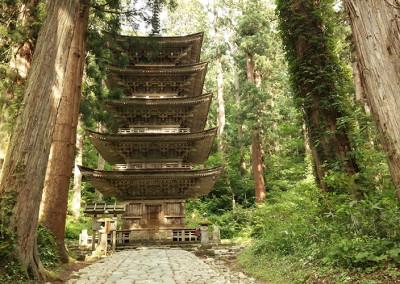 japanese_pogoda